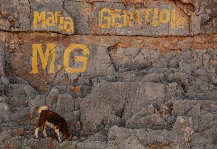 Goats have always abounded in Kumzar. The Mafia and their relationship with English spellings seem to be relatively new.