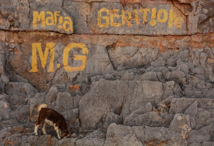 Mafia Goat?